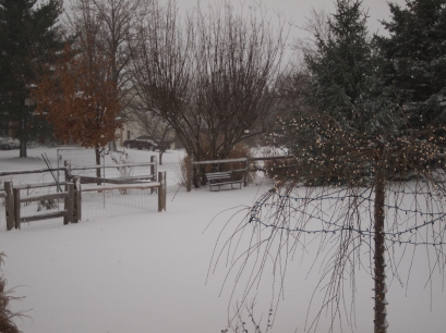 A view from our back yard.
