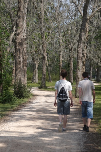 A Walk With Spanish Moss