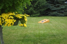 Corn Hole will entertain.